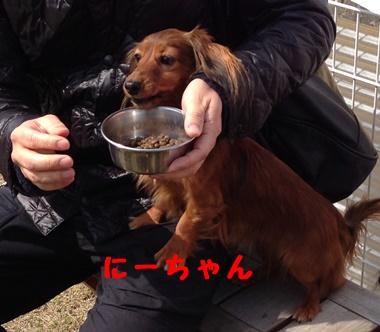 にーちゃん.JPG