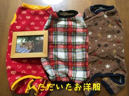 ぴーちゃん服3.JPG