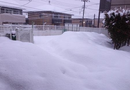 また雪.JPG