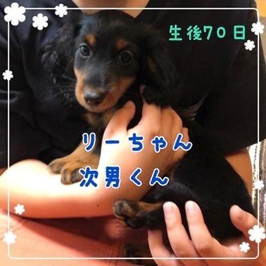 りーじなん.JPG