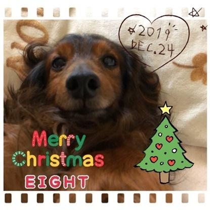 エイト2019クリスマス.JPG