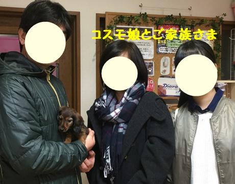 コスモ娘ふぁみ.JPG