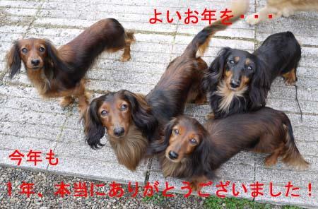 ハルエイトマリナりんbのコピー.jpg